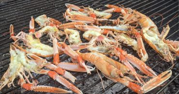 Langoustines Cooking
